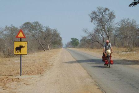 zimbabwe_hwange_national_park-compressed.jpg